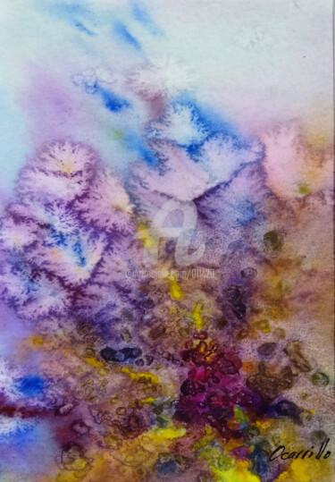 ocarrillo-coral.jpg